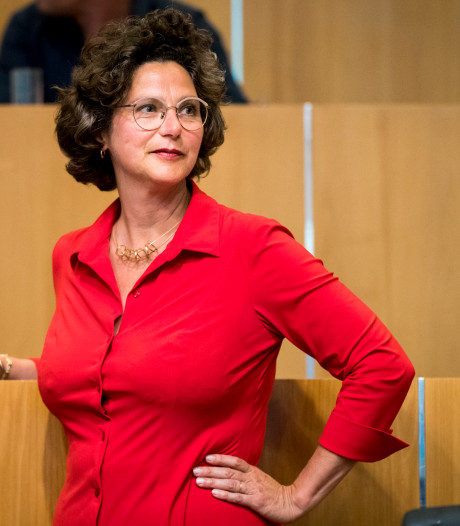 Wethouders Van Doorninck en Dijksma onder vuur bij oppositie om AEB