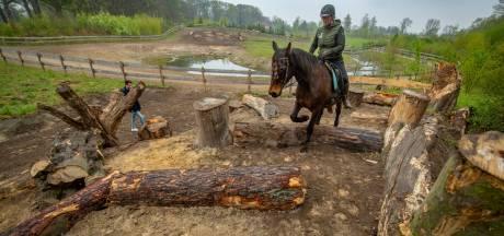 'Efteling voor paarden' in Empe; klauteren over rotsen, zwemmen door water en klimmen over bruggen