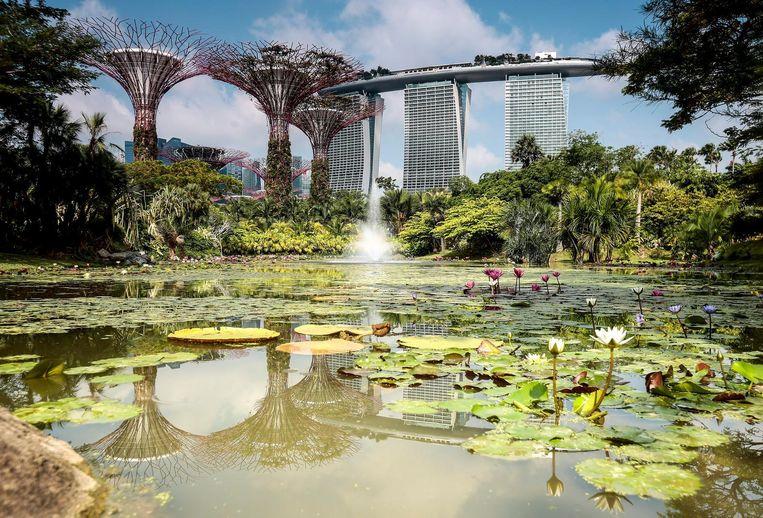 Beeld van het Marina Bay Sands Hotel in Singapore. Beeld anp