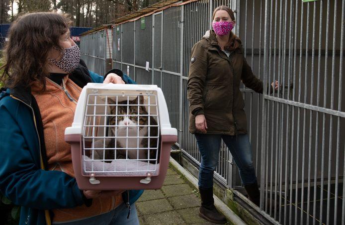 Beheerder Marlies Schneider (rechts) praat met medewerkster Ine Scheepers die kat Pritt naar huis brengt.