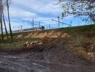 Na kaalkap langs spoorlijn in Sint-Denijs-Westrem: Joris Vandenbroucke pleit voor evenwichtiger groenbeheer bij Infrabel