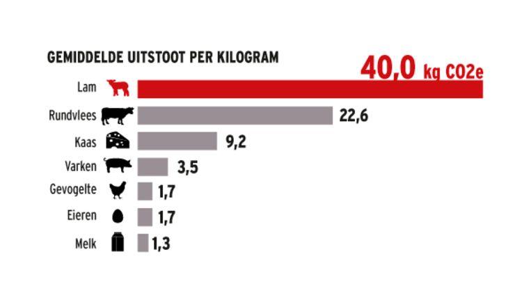 De gemiddelde uitstoot per kilogram ligt voor lam hoger, omdat een lam minder vlees geeft dan runderen. Beeld HLN