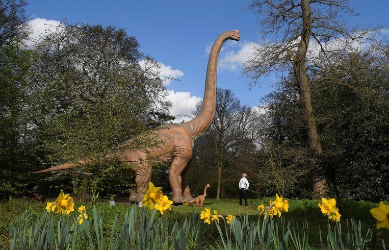 Een man tijdens de expo 'Jurassic Kingdom' in Londen begin 2017.  Beeld REUTERS/Toby Melville