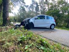 Automobilist verliest controle over het stuur en botst op boom langs de weg in Uddel