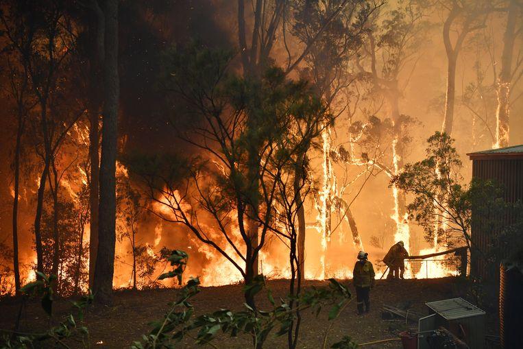 Bosbranden vlakbij Sydney. Beeld EPA