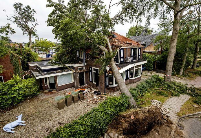 Een omgewaaide boom die tegen een woning is beland, een dag na de hevige storm.