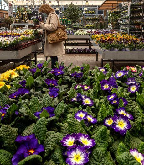 Dankzij winkelen op afspraak geluksmomentje in tuincentrum:  'Het is net als een rustige dag in de Efteling'