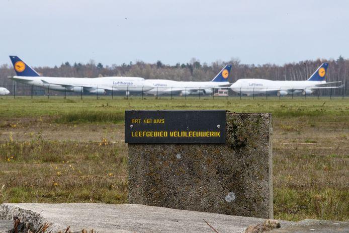 Aan de rand van het luchthaventerrein ligt het leefgebied van de veldleeuwerik.