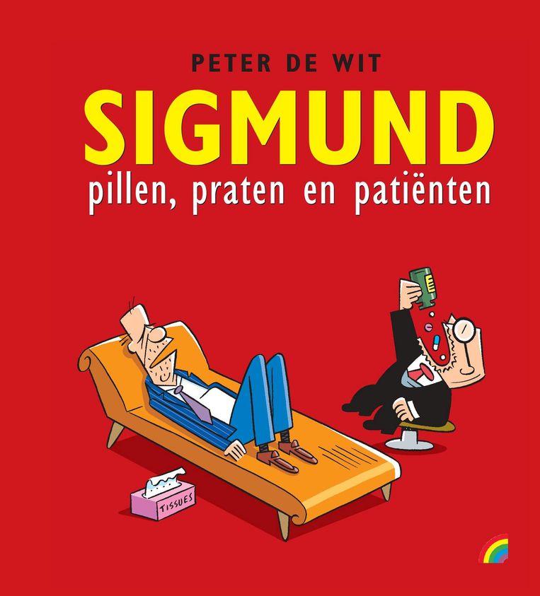 Peter de Wit Rainbow, € 12,50 Beeld