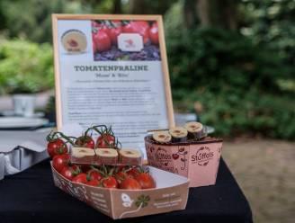 IN BEELD. Stralend weer lokt massa bezoekers naar Tomatenfestival in Arboretum en pralines vallen (bij de meesten) in de smaak