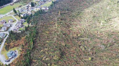 Dit deden de stormen in Italië met bos