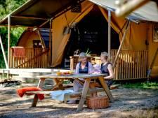 Luxe tenten, foodtrucks en festivalsfeer op Landgoed De Acht Morgen in Appeltern