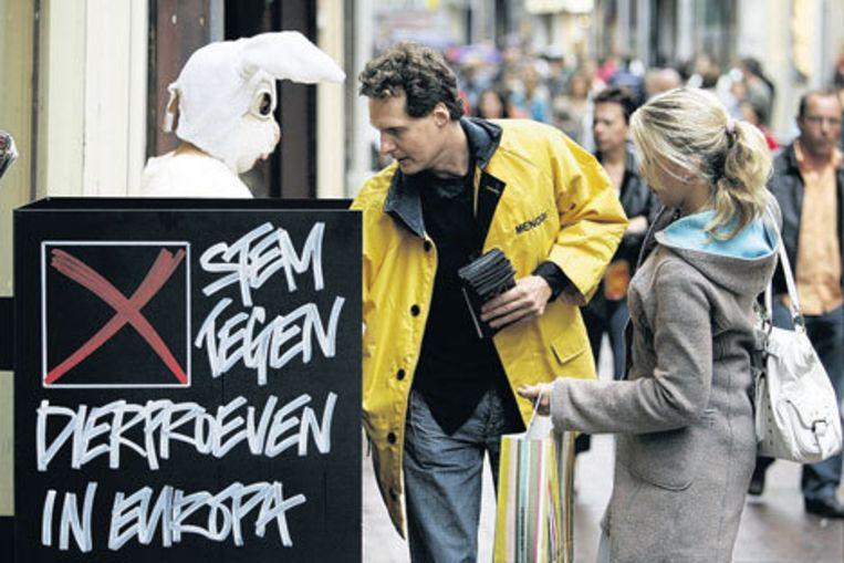 Een 'konijn' voert actie tegen dierproeven bij een cosmeticawinkel in Amsterdam. Foto ANP/Rick Nederstigt Beeld