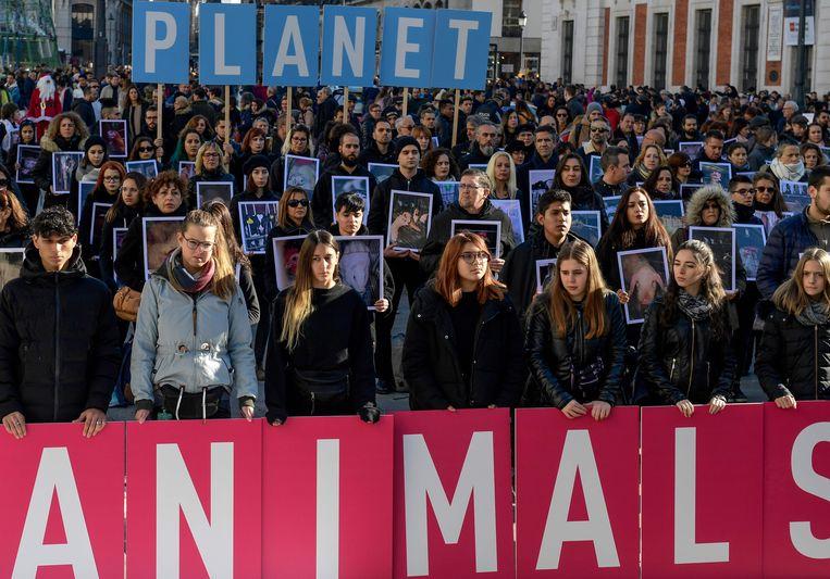 In Madrid wordt tijdens de klimaattop veel gedemonstreerd. Na de klimaatmars van vrijdagavond was het zaterdagochtend tijd voor dierenrechten: 'Save the planet, save the animals'. Het initiatief kwam van Animal Equality. Beeld AFP