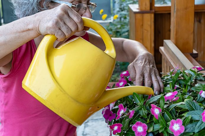 Tuinieren behoort tot de activiteiten bij het nieuwe woonzorgcentrum De Zorgheimer bij Ouwerkerk.