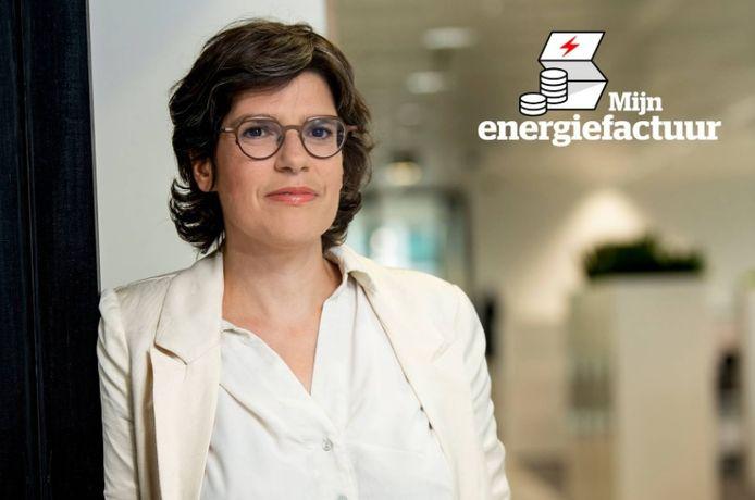 Minister van Energie Tinne Van der Straeten (Groen).