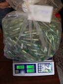 Een deel van de forse hoeveelheid drugs waarmee Roelf en Gert-Jan werden gepakt: zakken vol voorgedraaide joints.
