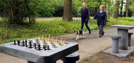 Schaken in het park, het kan in Oosterhout: 'Het staat iedereen vrij een potje te spelen'