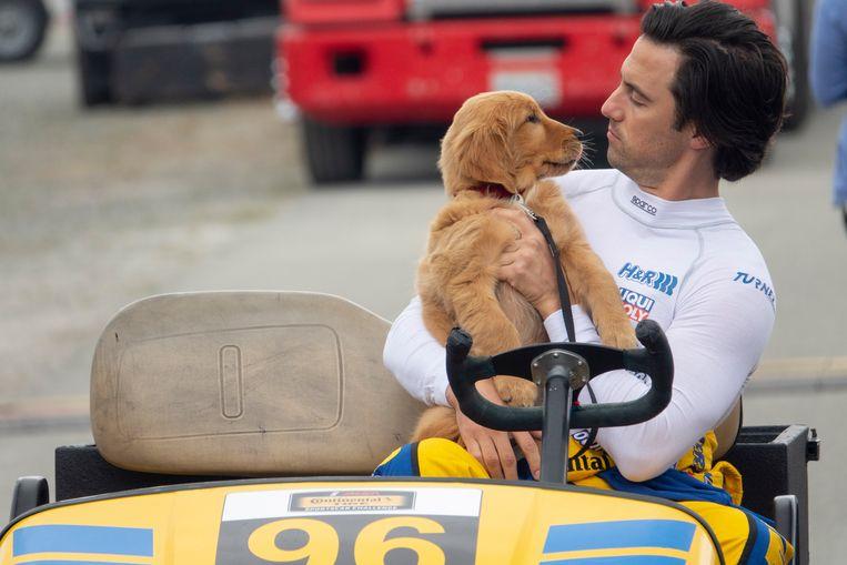 Hondje Enzo en Milo Ventimiglia in 'The Art of Racing in the Rain'. Beeld RV