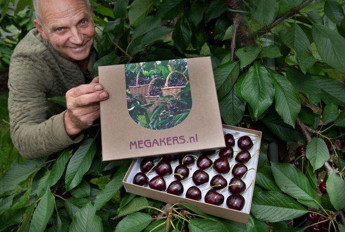 De megakersen van Roeland Hakkert gaan verpakt als dure bonbons de hele wereld over.