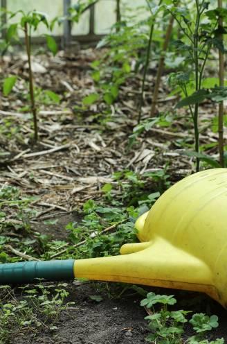 Preventieve maatregelen voor sites waar PFOS-normen mogelijk overschreden worden: matig consumptie van groenten uit de tuin, kinderen niet op terrein laten spelen