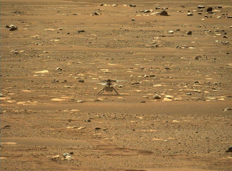 De Ingenuity op Mars Beeld EPA