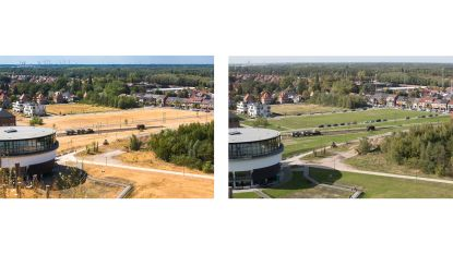 """""""Limburg heeft dringend een heel nat voorjaar nodig"""": provincie dreigt deze zomer nog grotere problemen te krijgen met watervoorziening"""