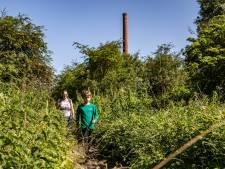 Flora in de Duursche Waarden verdient opknapbeurt: 'Het moet nóg meer een parel van een natuurgebied worden'
