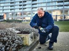 Rotterdam is overlast met ongedierte in centrum beu: 'Alle ratten moeten opsodemieteren'