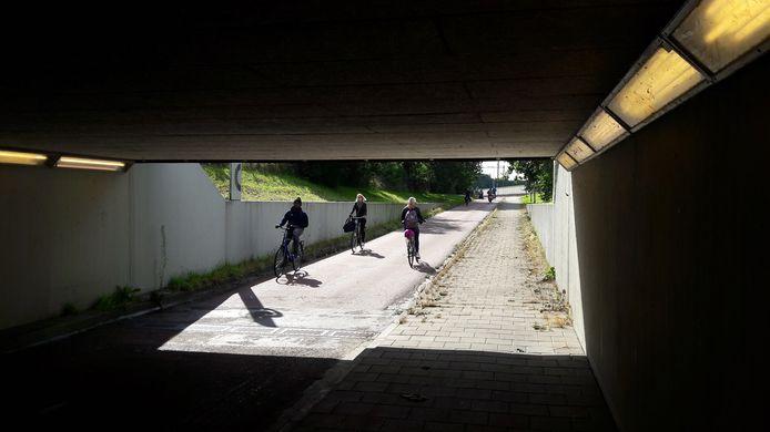 Foto ter illustratie: De Hortensiatunnel verbindt de wijk Assendorp en Zwolle-Zuid.