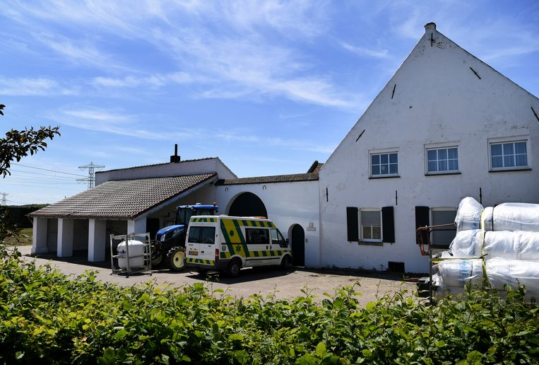 De huisvesting in deze boerderij in Linne was zwaar verouderd, vervuild, verwaarloosd en onveilig. Beeld Marcel van den Bergh / de Volkskrant