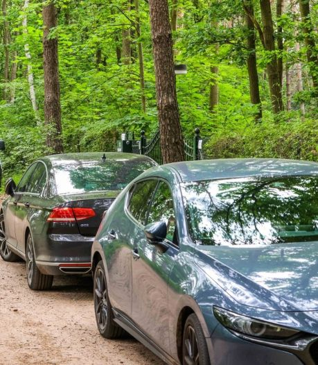 Dode man (70) in bosvilla in Lieshout door misdrijf om het leven gekomen: 'Dachten dat hij op vakantie was'