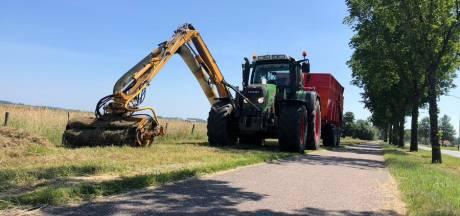 Nijmegen wil nog wildere bermen en inwoners kunnen helpen