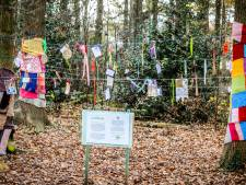 Wegens succes verlengd: de wensboom van AZ Sint-Lucas, waar je iets kan neerschrijven