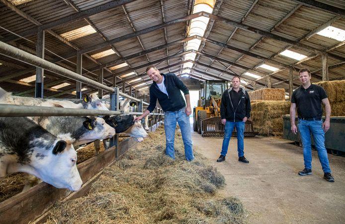 Van links naar rechts boer Herman Pieter Prangsma, Pieter Burgwal en slager Berry van Kruistum.