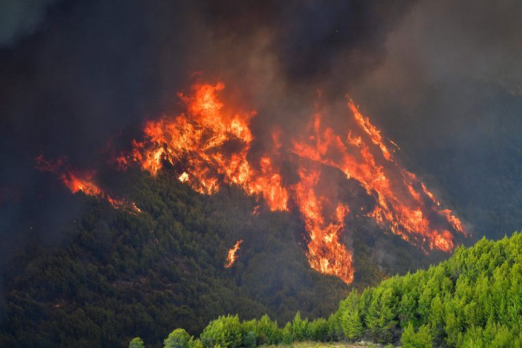 Een grote bosbrand nabij het dorp Platanos, dicht bij het antieke Olympia Beeld AFP