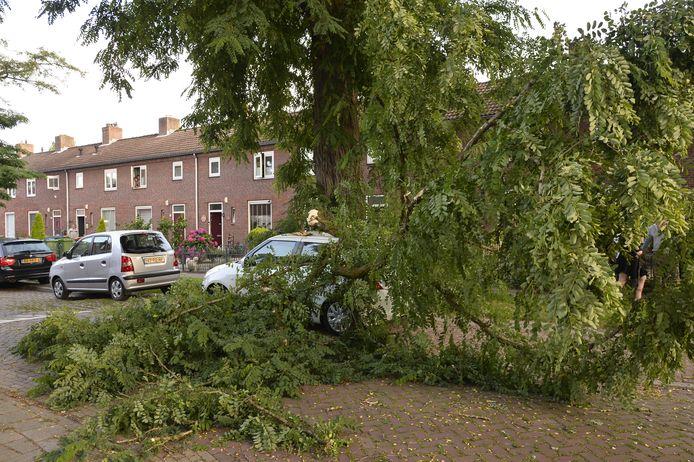 De auto van straatbewoonster Carina is maandag 12 juli verpletterd door een gevallen boomtak. In de Van der Duyn van Maasdamstraat in de Heuvel in Breda.
