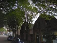Bomenkap verdeelt groene Floraliastraat in hartje Oss