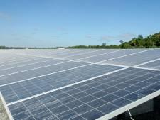 Grote belangstelling voor aanleg zonneparken in Laarbeek