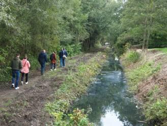 """Bufferbekken inspireert tot bos van station naar Planckendael: """"Hier creëren we natuur bij"""""""