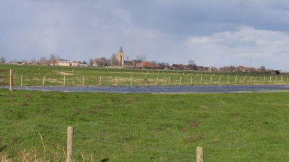 Alveringem wil boeren tegemoetkomen voor bewerken historische graslanden in Lampernisse