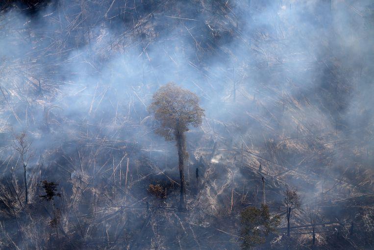 De Amazone tijdens de grote bosbranden in september 2019 Beeld Reuters