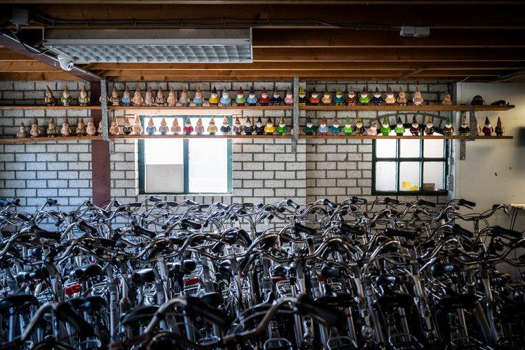 Bij fietsverhuur Nobel in Nes staan zo'n dertig aangespoelde tuinkabouters, door de vorige eigenaar bijna allemaal beschilderd. Beeld Kees van de Veen