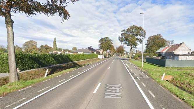 Fietspaden langs N460 worden heraangelegd: Verkeer richting Ninove wordt volgende week omgeleid