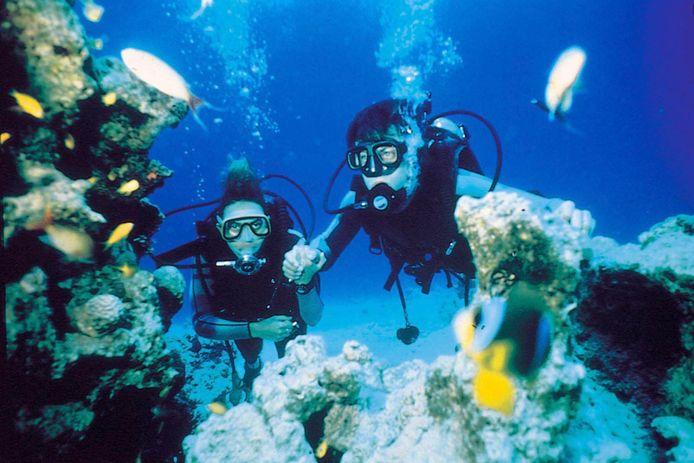 Eigen Wijze Duikreizen organiseerde reizen naar exotische bestemmingen.