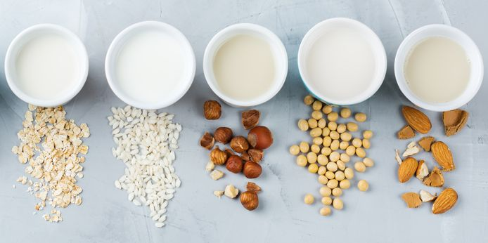 Van links naar rechts: havermelk, rijstmelk, hazelnootmelk, sojamelk, amandelmelk.