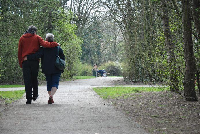 De gemeente Zelzate gaat onderzoeken of het verlichting kan plaatsen in het gemeentepark op de oude kanaalbedding.