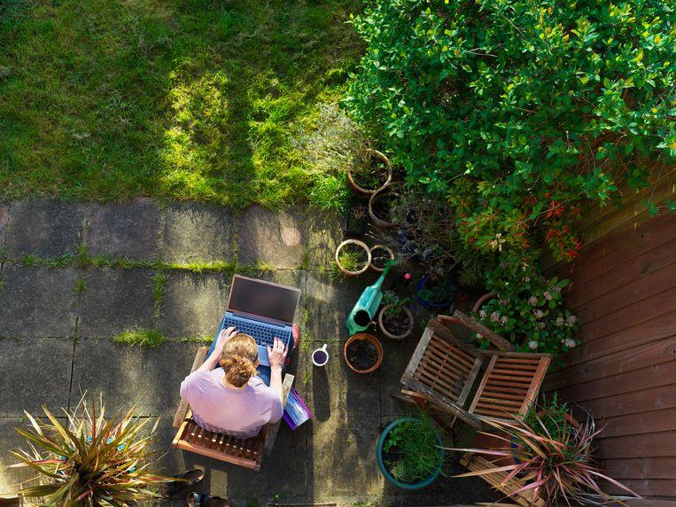 Met centrale inkomensgarantie kunnen zzp'ers steile inkomensval voorkomen. Beeld Getty Images