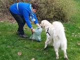 Hou Nederland schoon: train je hond om zwerfafval op te ruimen