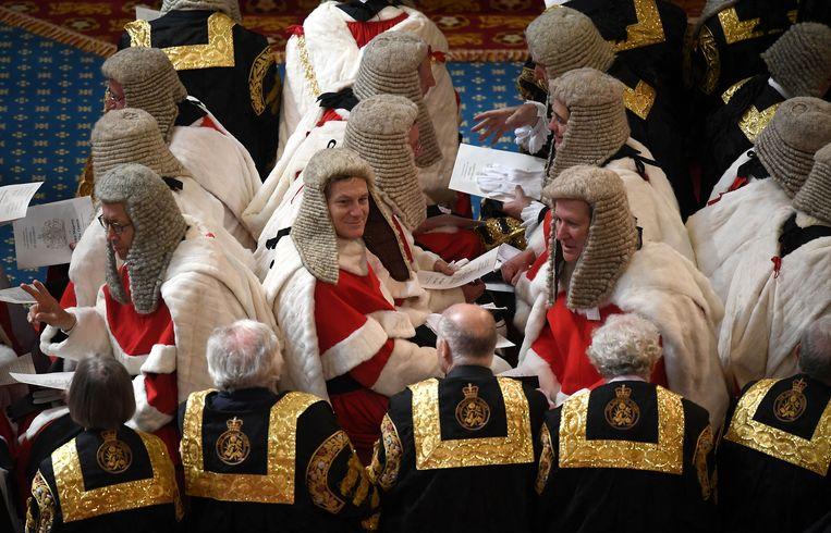 Leden van het Britse Hogerhuis bij de opening van het parlementaire jaar.  Beeld REUTERS